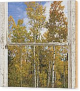 Colorado Autumn Aspens Picture Window View Wood Print