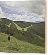 Colorado Mountain Freedom Wood Print