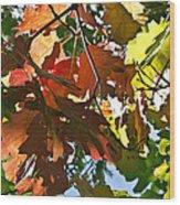 Colorado October Wood Print