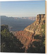Colorado River View Wood Print