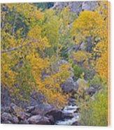 Colorado Rocky Mountain Autumn Canyon View Wood Print