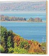 Colored Peninsula  Wood Print