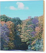 Colored Trees Wood Print