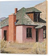 Colorful Abandoned Home In Dying Farm Town Wood Print