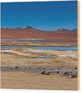 Colorful Altiplano Wood Print