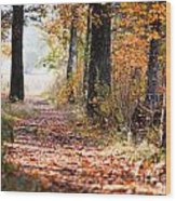 Colorful Autumn Landscape Wood Print