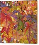 Colorful Autumn Leaves Art Prints Trees Wood Print