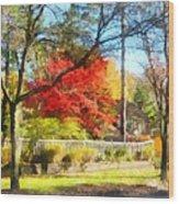 Colorful Autumn Street Wood Print