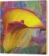Colorful Calla Lily Wood Print