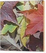 Colorful Fall Leaves Wood Print