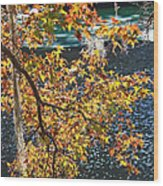 Colorful Fall Leaves Over Blue Water Wood Print