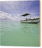 Colorful Fishing Boat Of The Caribbean  Wood Print