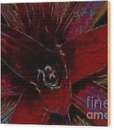 colorful Frond Wood Print