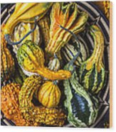 Colorful Gourds In Basket Wood Print