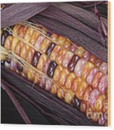 Colorful Indian Corn Wood Print