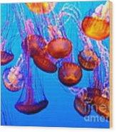 Colorful Jellies Wood Print by Ellen Heaverlo