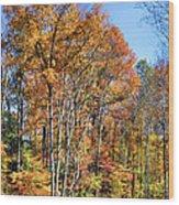 Colorful Wood Print