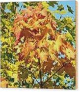 Colorful Leaf Cluster Wood Print