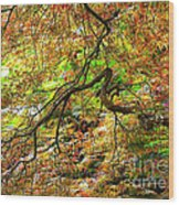 Colorful Maple Leaves Wood Print
