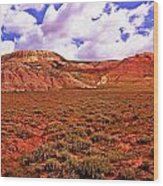 Colorful Mesas At Fossil Butte Nm Butte Wood Print