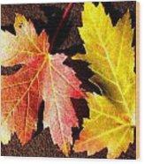 Colorful Pair Wood Print