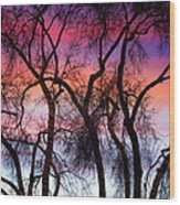 Colorful Silhouetted Trees 9 Wood Print