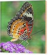 Colorful Wing Wood Print