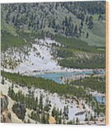 Colorful Yellowstone Valley Wood Print
