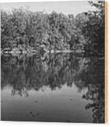 Colorless Reflection Wood Print