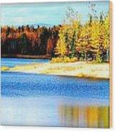 Colors At Chena Wood Print
