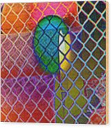 Colors Hiding Behind Fence Wood Print
