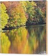 Colorwash On The Pond Wood Print