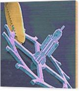 Coloured Sem Of Endoscopy Forceps Holding A Cog Wood Print by Volker Steger