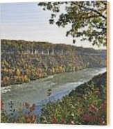 Colours Of The Fall In The Niagara Glen Wood Print