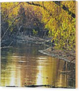 Columbia Bottoms Slough II Wood Print
