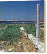 Column In Delos Wood Print