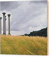 Columns 2 Wood Print