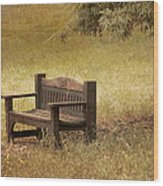Come And Sit A Spell Wood Print