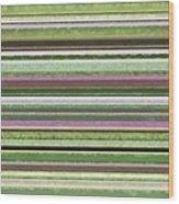 Comfortable Stripes Lv Wood Print