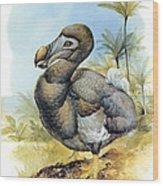Common Dodo Wood Print