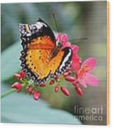 Common Lacewing Wood Print