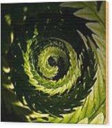 Common Polypody Swirl Wood Print