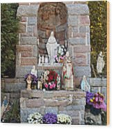 Comparison Mother Mary Shrine Wood Print
