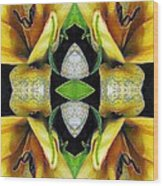 Compassion - Card X From The Tarot Of Flowers Wood Print
