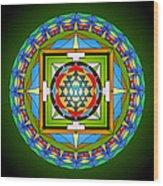 Compassionate Vision Wood Print