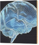 Computer Artwork Of A Wire-frame Model Of A Brain Wood Print