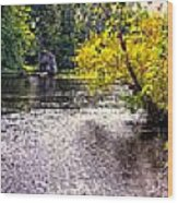 Concord River At Old North Bridge II Wood Print by Nigel Fletcher-Jones