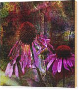 Cone Flower Beauties Wood Print by J Larry Walker