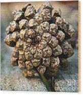 Cone Top Wood Print