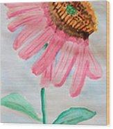 Coneflower - Watercolor Wood Print